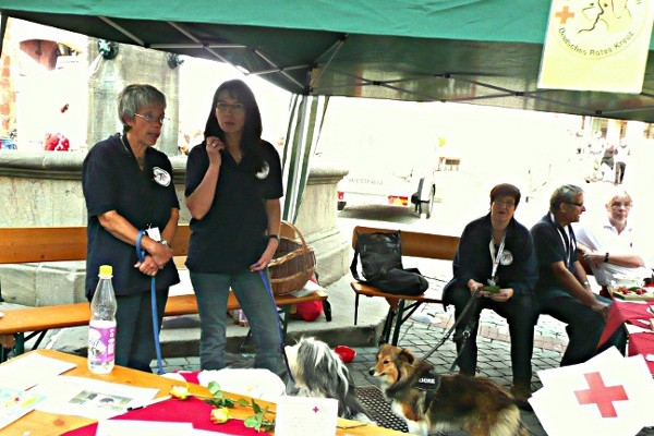2011-09-17_therapiehunde_infostand